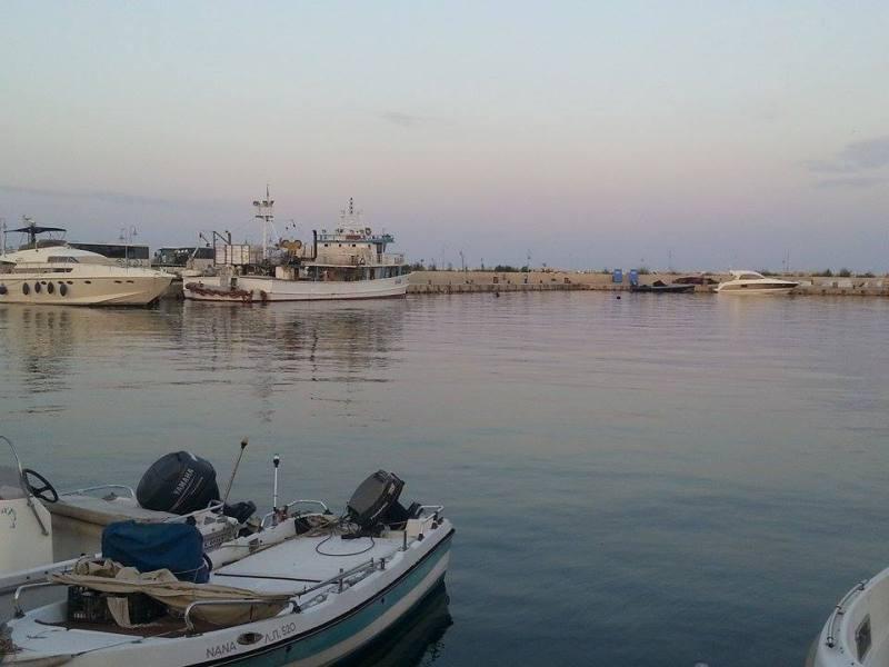 Κρηπίδωση μόλων αλιευτικού καταφυγίου Καλλιράχης Θάσου